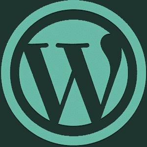 Webmaster spécialiste de WordPress région Aix en Provence